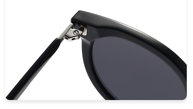 2021 sunglasses TG